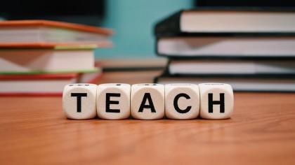 professeur du mois de février DigiSchool| Com Into Blossom